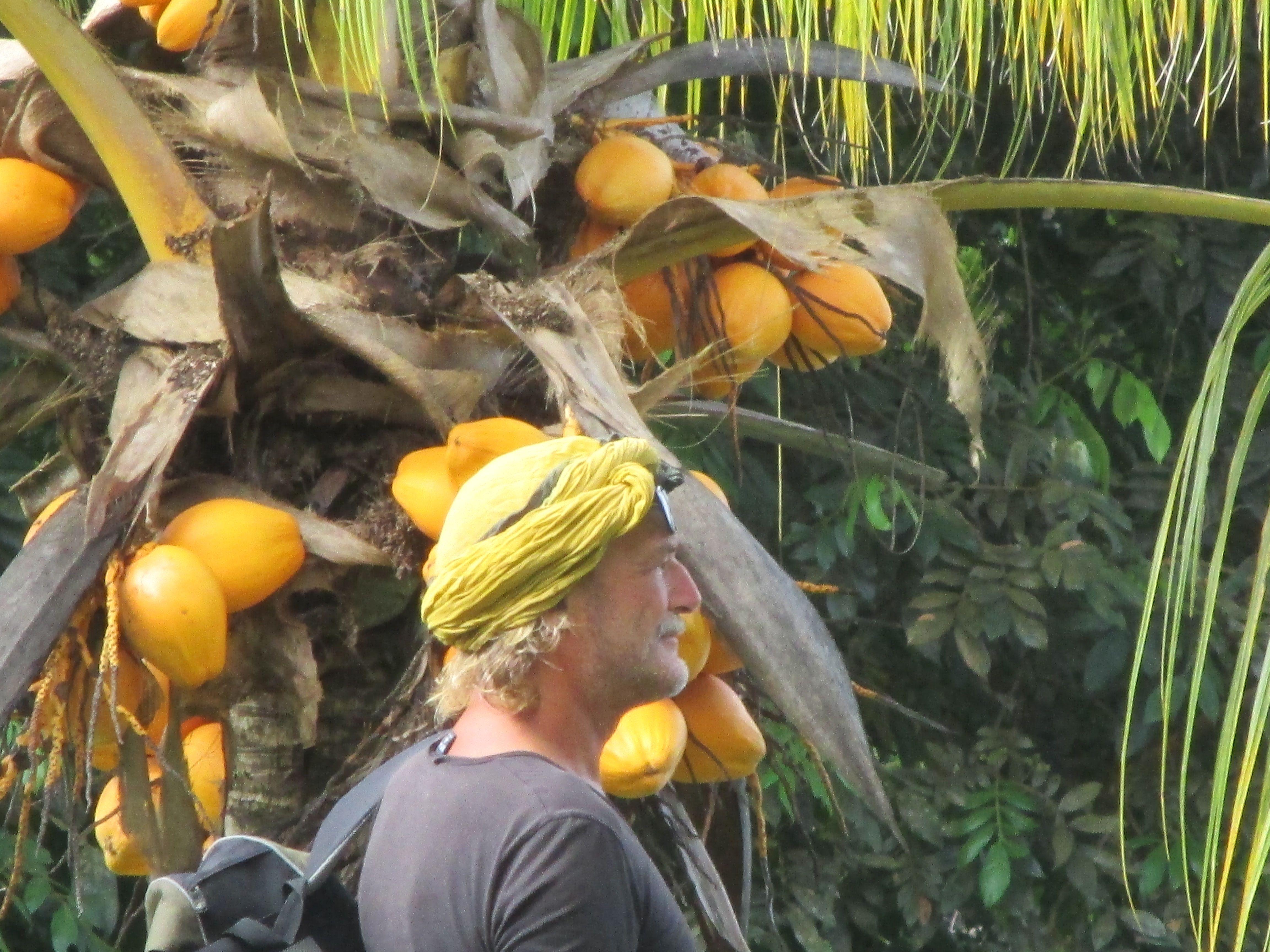1000+ images about Suriname door een gele bril on Pinterest ...