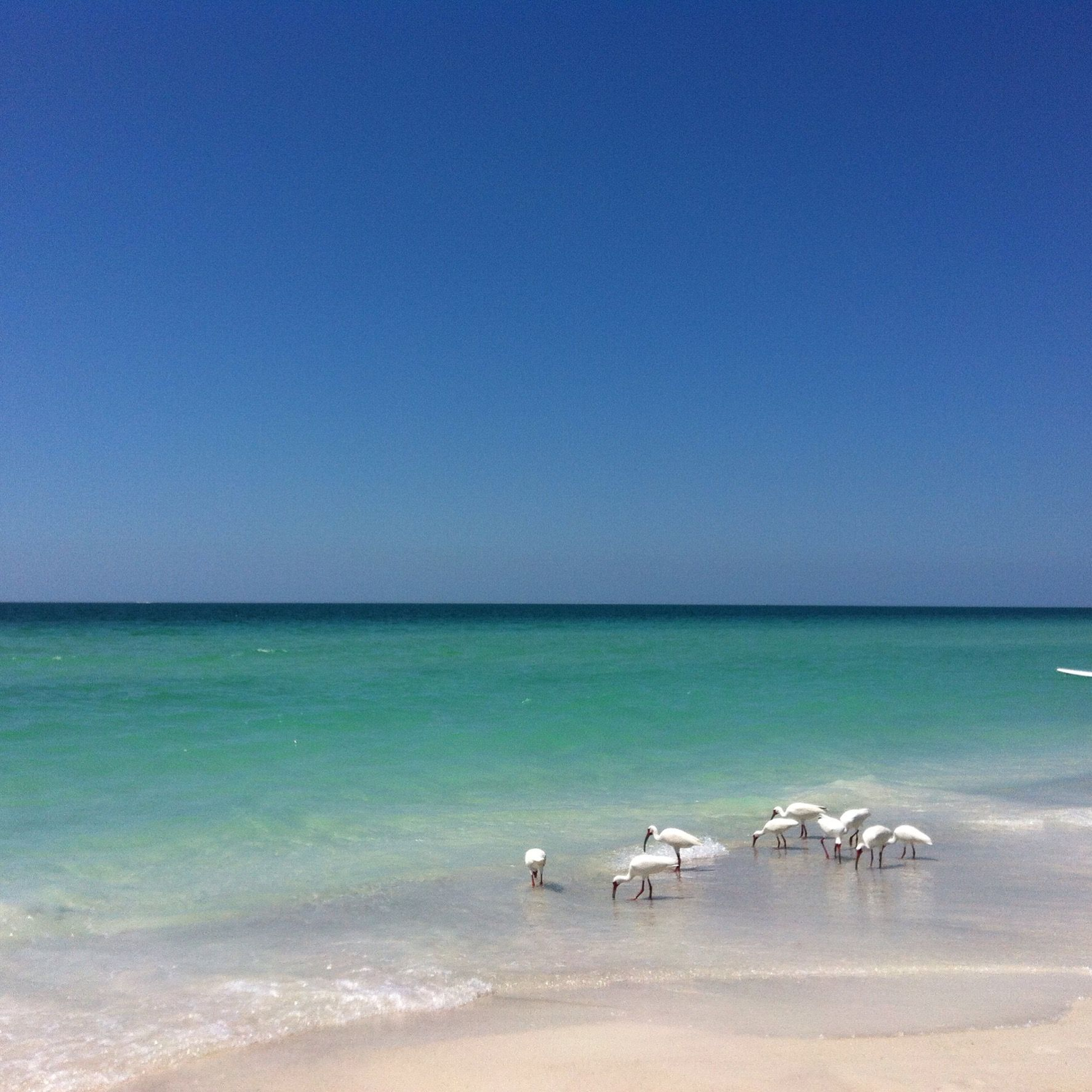 Anna Maria Island Beach: Summer At Mermaids Crossing Vacation Rental On Anna Maria