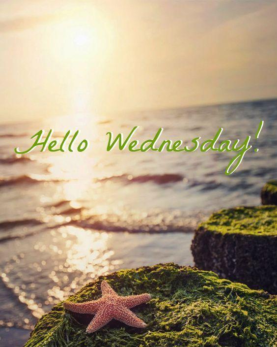 Hello Wednesday Illustration Design Stock Illustration