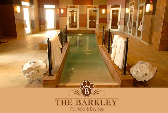 The Barkley Hotel For Dogs Chagrin Falls Oh