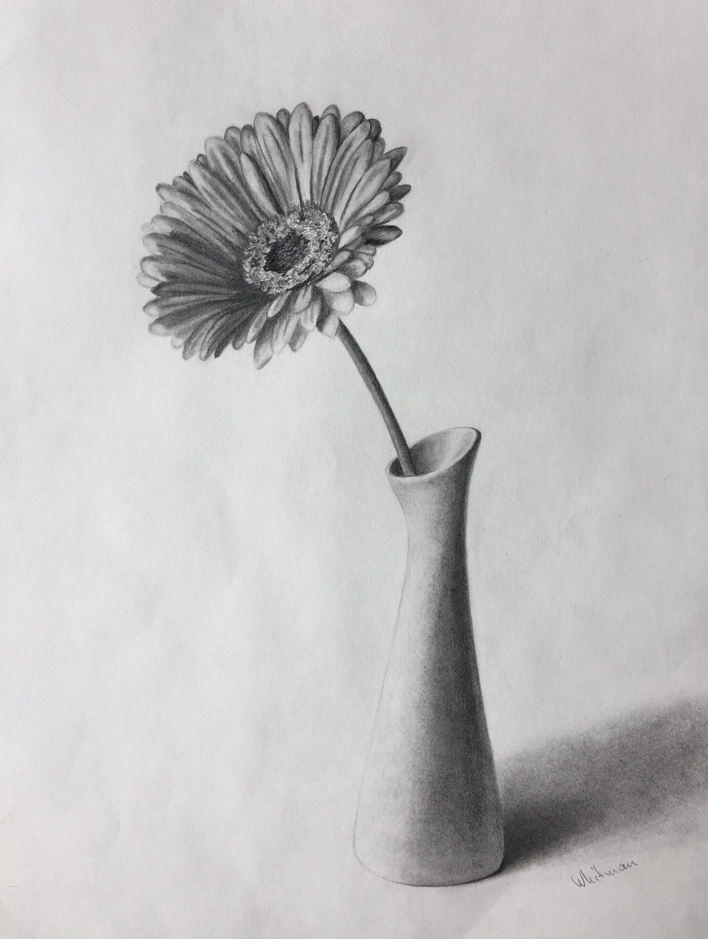 $80 Gerbera flower in a vase, still life sketch. Original ...