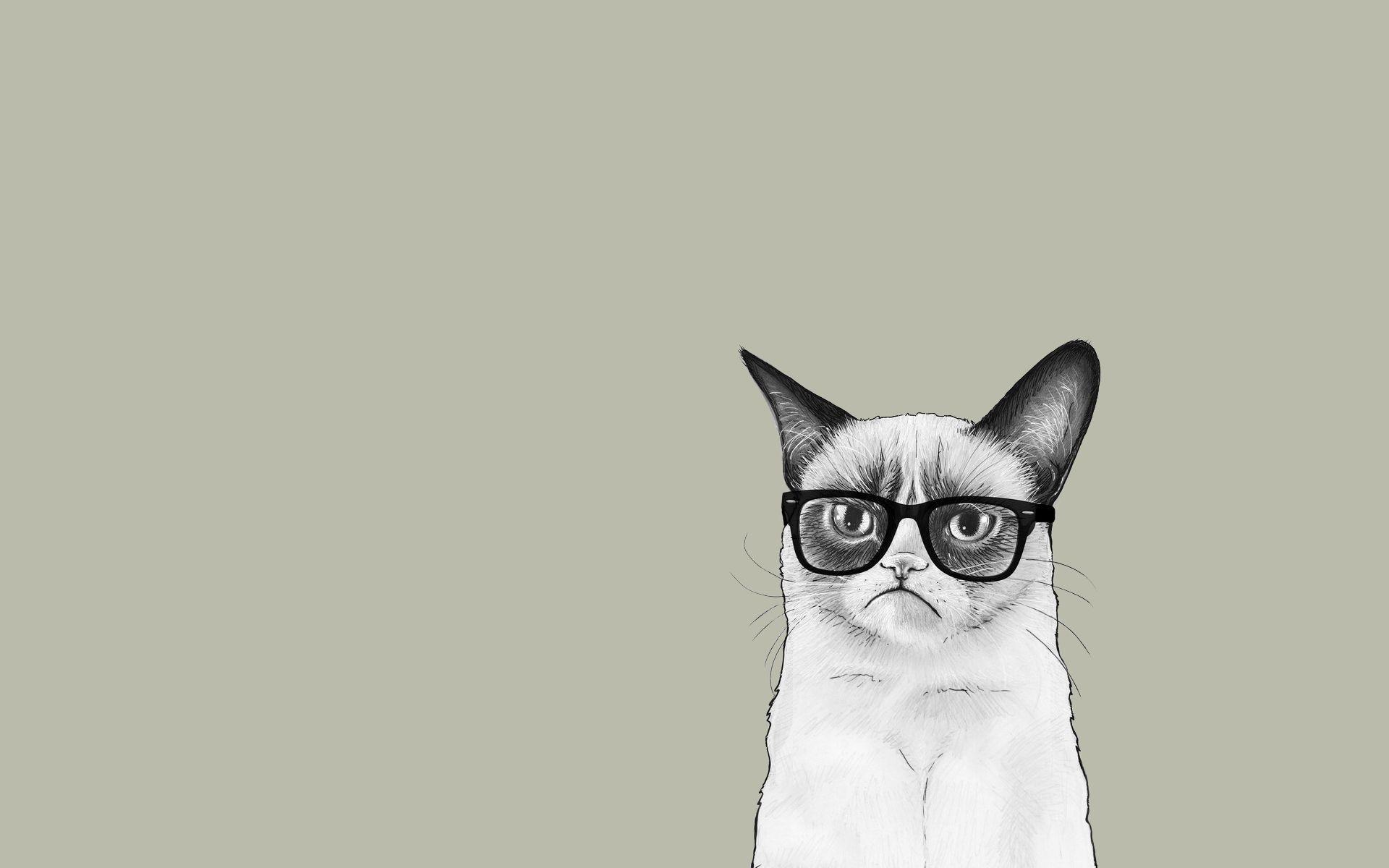 Minimalist Wallpaper Grumpy Cat Desktop Wallpaper Art Minimalist Wallpaper Cartoon Wallpaper
