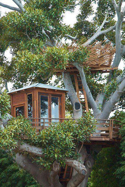 Traumhaftes Zweistöckiges Baumhaus. Home Styles: Tree Houses Style U0026 Design