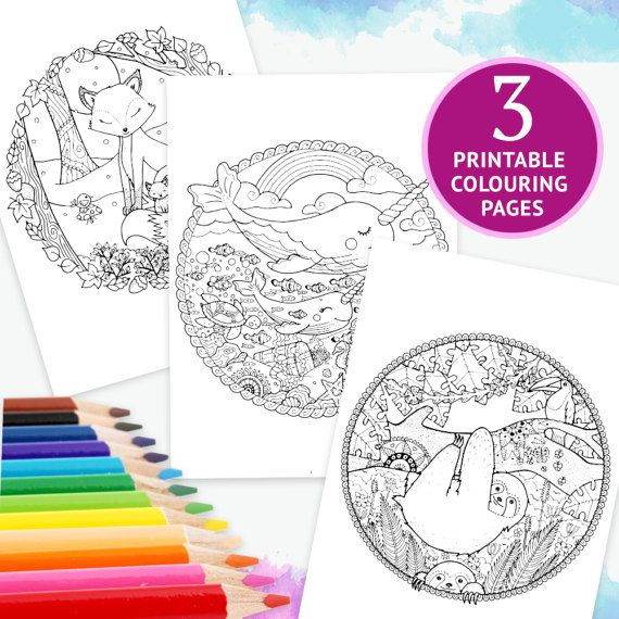 3 ADULT COLORING PAGES Winter Woodland Cosy Foxes Happy Narwhals And Sea Creature Companions Baby Sloths In The Rainforest Download Bundle