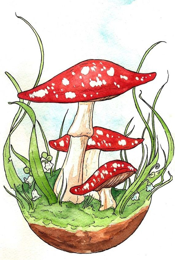 Cheery Red Toadstools by Georgia Dunn
