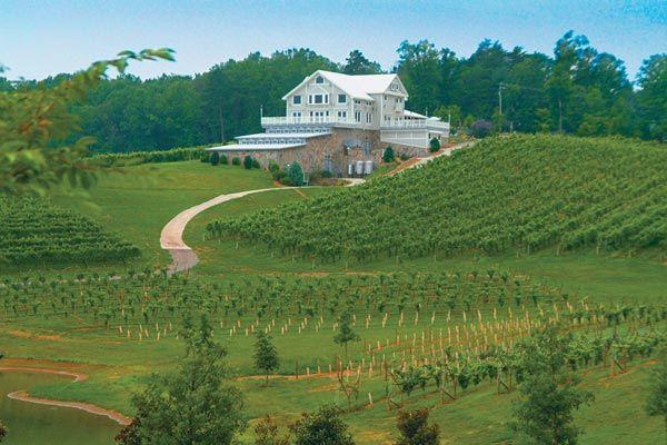 Georgia Wine Tourism