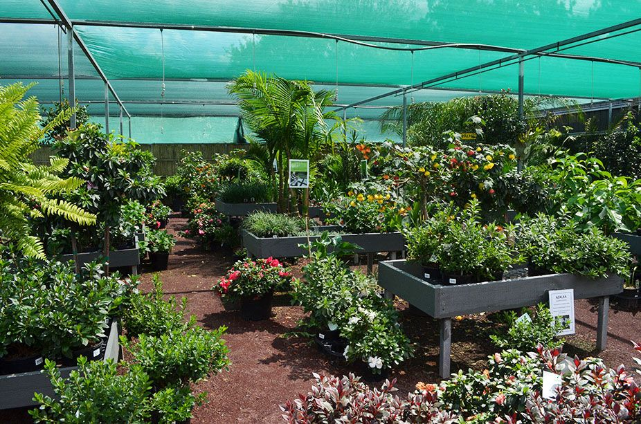 Your Local Grow Master Heatherton Team Offers Gardening Services In Victoria It Is Important That