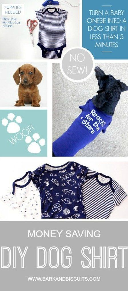 Pet Pooch Boutique Stanley Hundehalsband