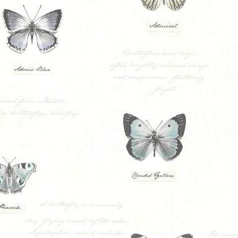 Black Admiral Butterflies and Script Wallpaper