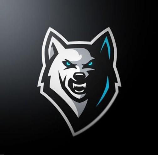 My youtube channel Sports logo, Esports logo, Animal logo