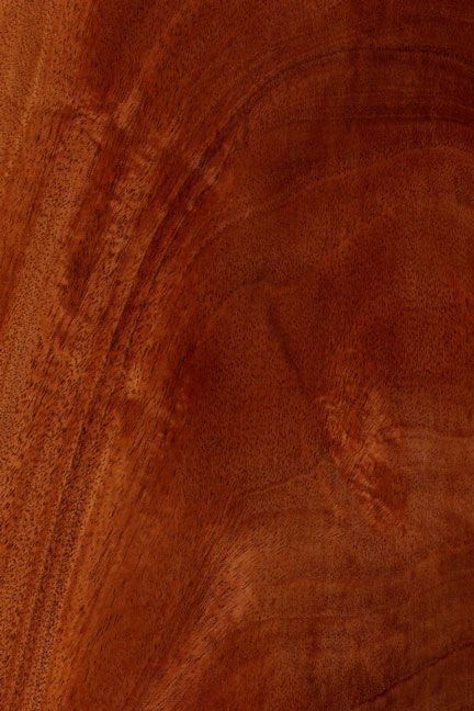 18+ Where does mahogany wood come from ideas in 2021