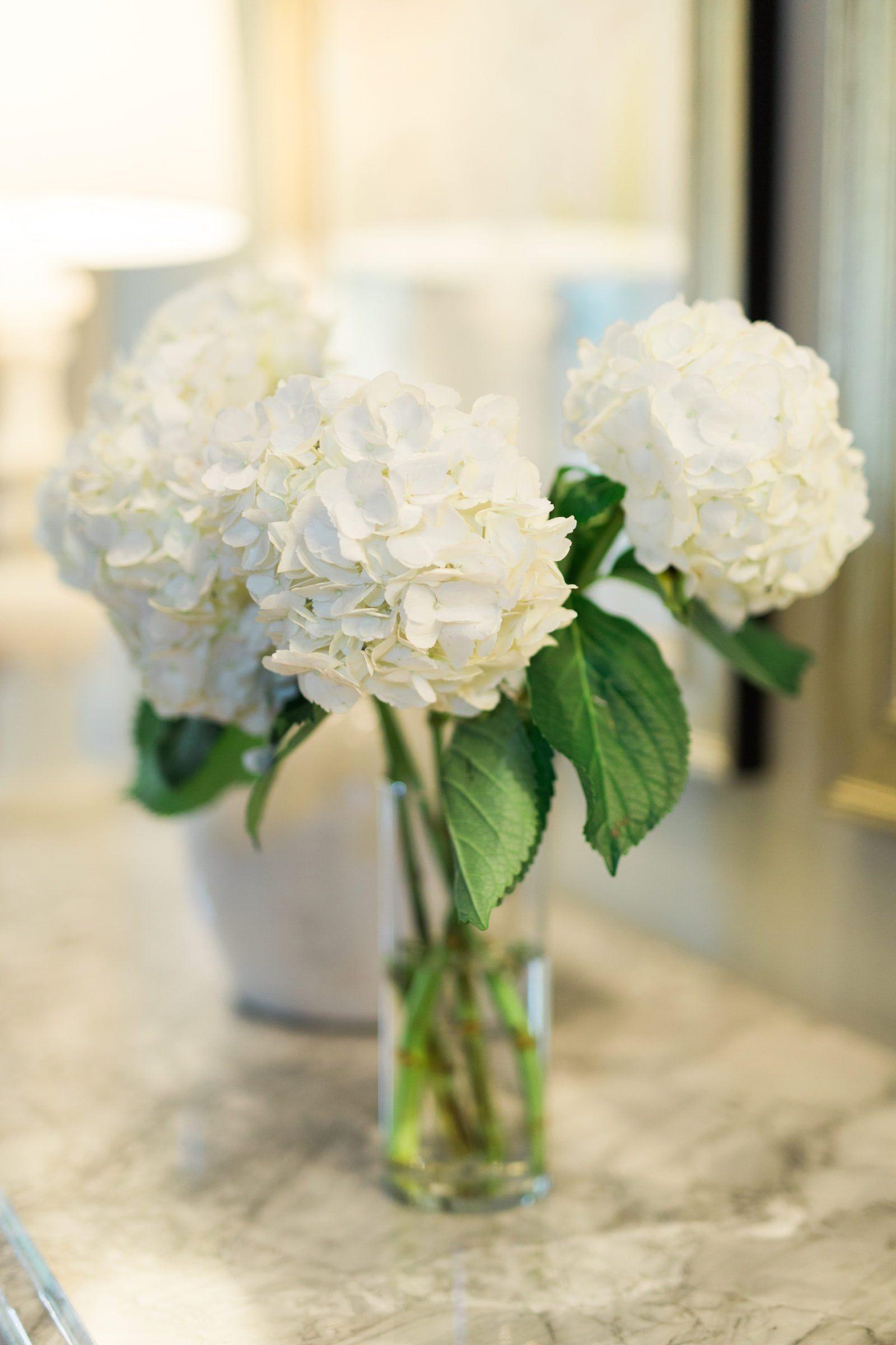 3 ways to keep hydrangea from wilting
