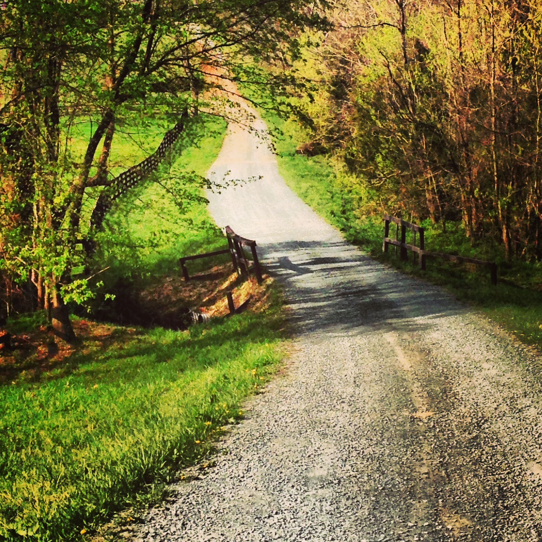 Spring road revealed