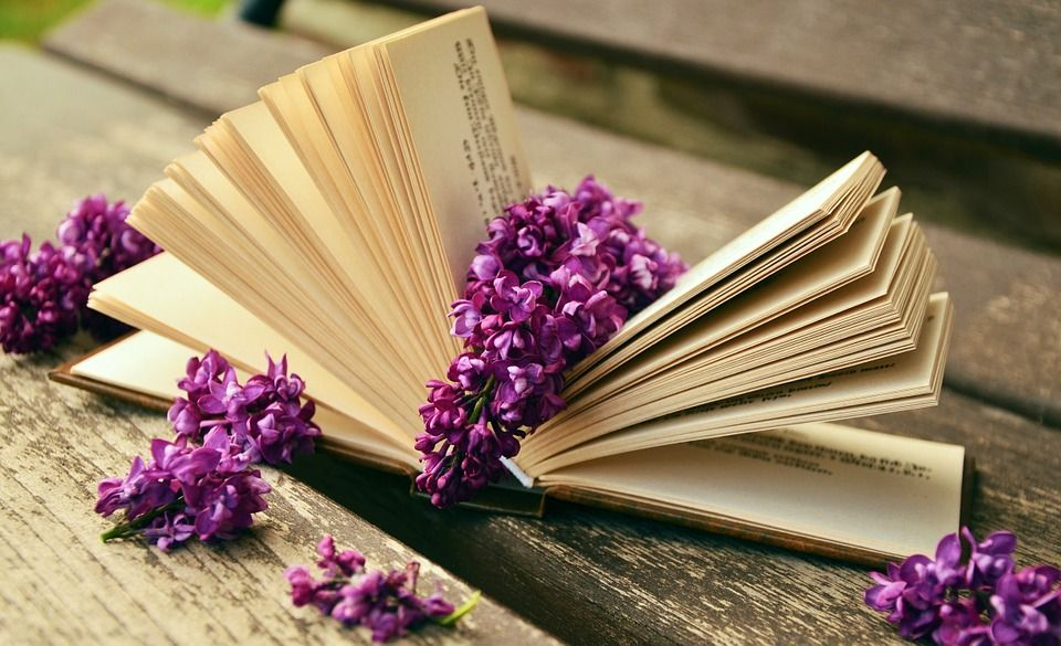 Book, Read, Relax, Lilac, Bank, Old, Book Pages, Rest