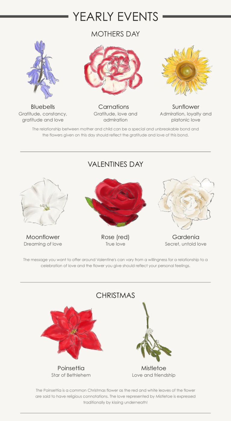 A Flower For Every Occasion Your Complete Guide Flower Meanings Language Of Flowers Birth Month Flowers