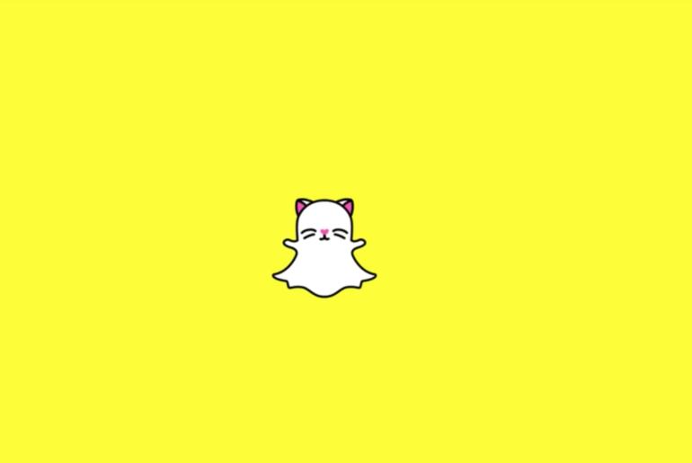 Snapchat Lance Les Filtres Pour Chats Snapchat Filtre Chat
