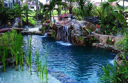 Sand Entrance Into Lagoon Pool Lagoon Pool Backyard Pool Pool Landscaping