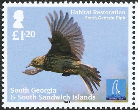South Georgia Pipit stamps - mainly images - gallery format