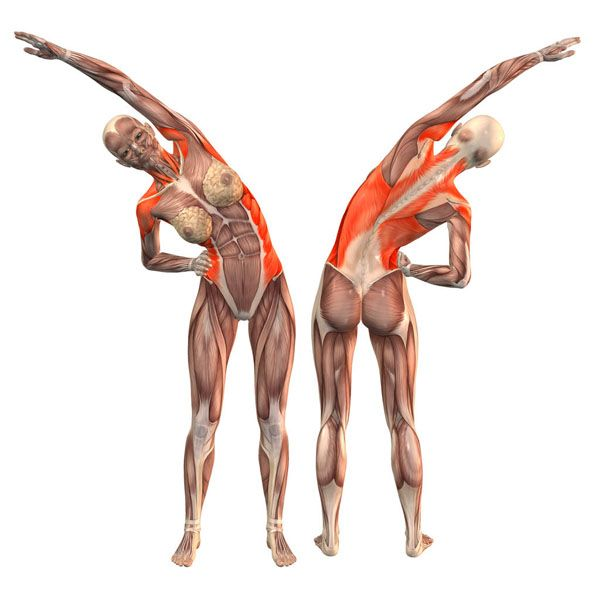 Right bend - Salamba Konasana right - Yoga Poses | YOGA.com | Yoga ...