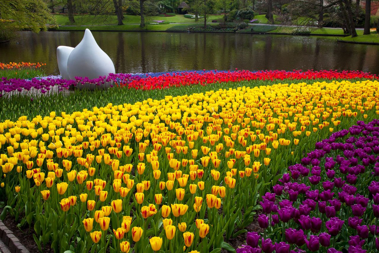 keukenhof in the netherlands it is just so beautifel
