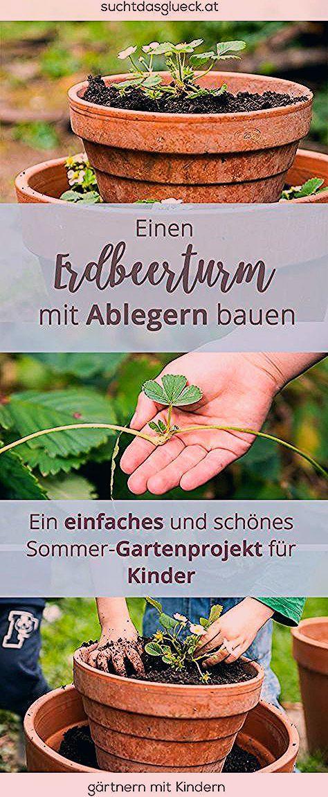 Photo of Gartenprojekt für Kinder: Einen Erdbeerturm bauen (mit eigenen Ablegern) – Fräulein im Glück