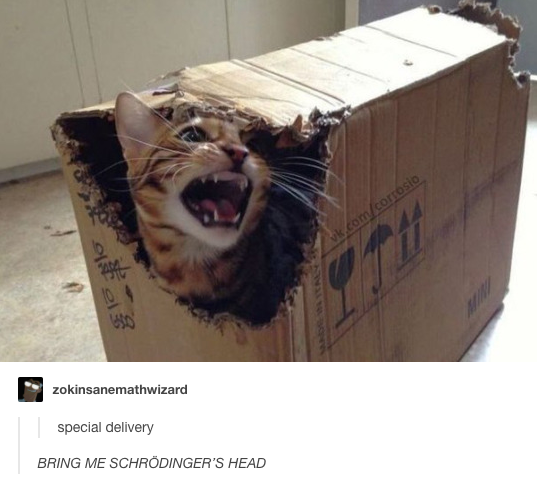 On science:   23 Times Cats Were The Absolute Best Part Of Tumblr