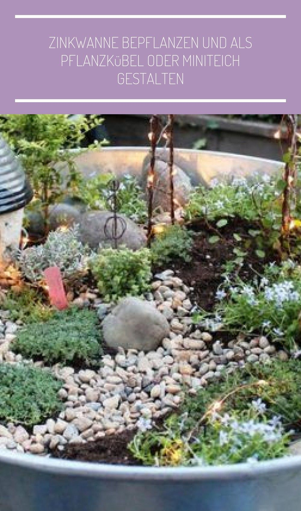 Zinkwanne Bepflanzen Mini In 2020 Zinkwanne Bepflanzen Zinkwanne Mini