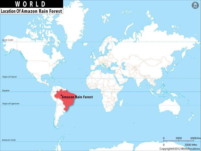 Where Is Amazon Rainforestcenter Div Heading - Where is burundi