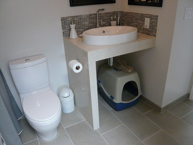 L1110781 Bathroom Cabinets Litter Box Bathroom Before