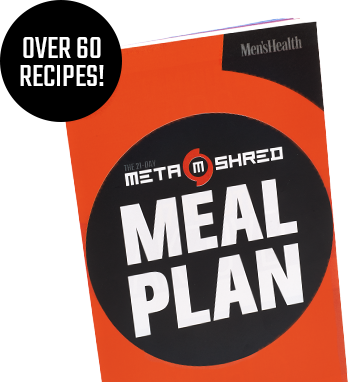 the 21 day metashred pdf
