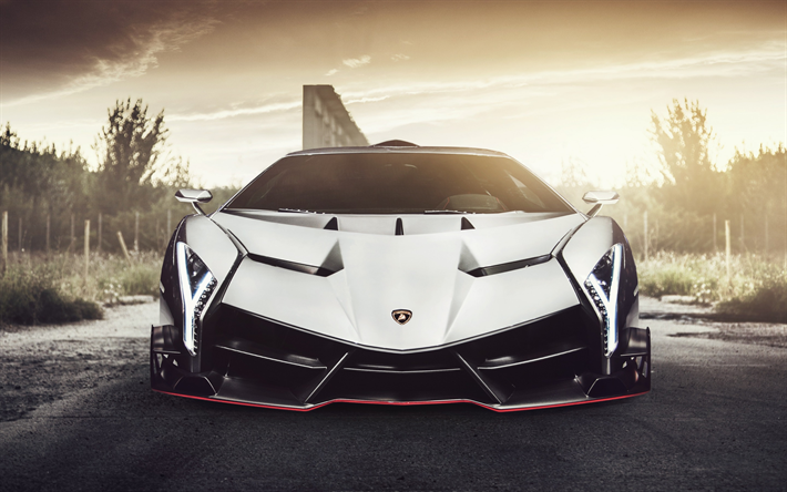 Download Wallpapers Lamborghini Veneno 2017 Vag White Veneno