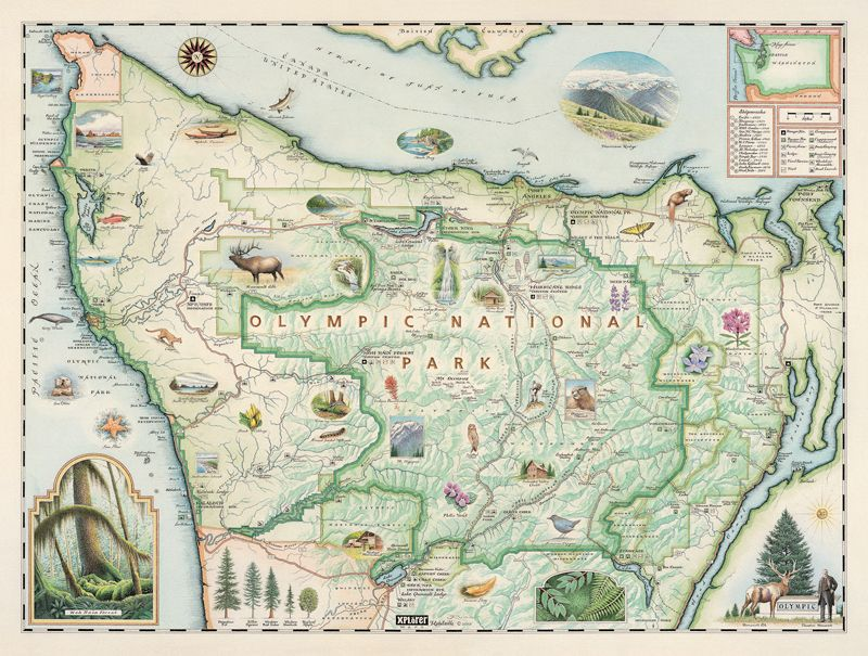 91 best Maps images on Pinterest Illustrated maps, Map - copy interactive world map amazon