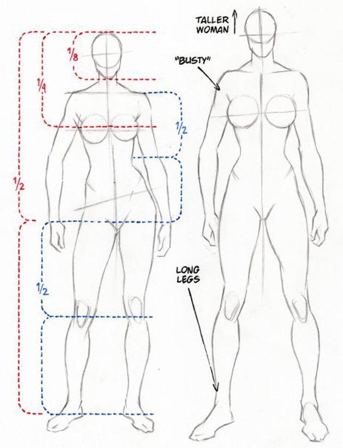 Female Anatomy Reference Top Row Row 2 Drawing Cutting Edge Anatomy