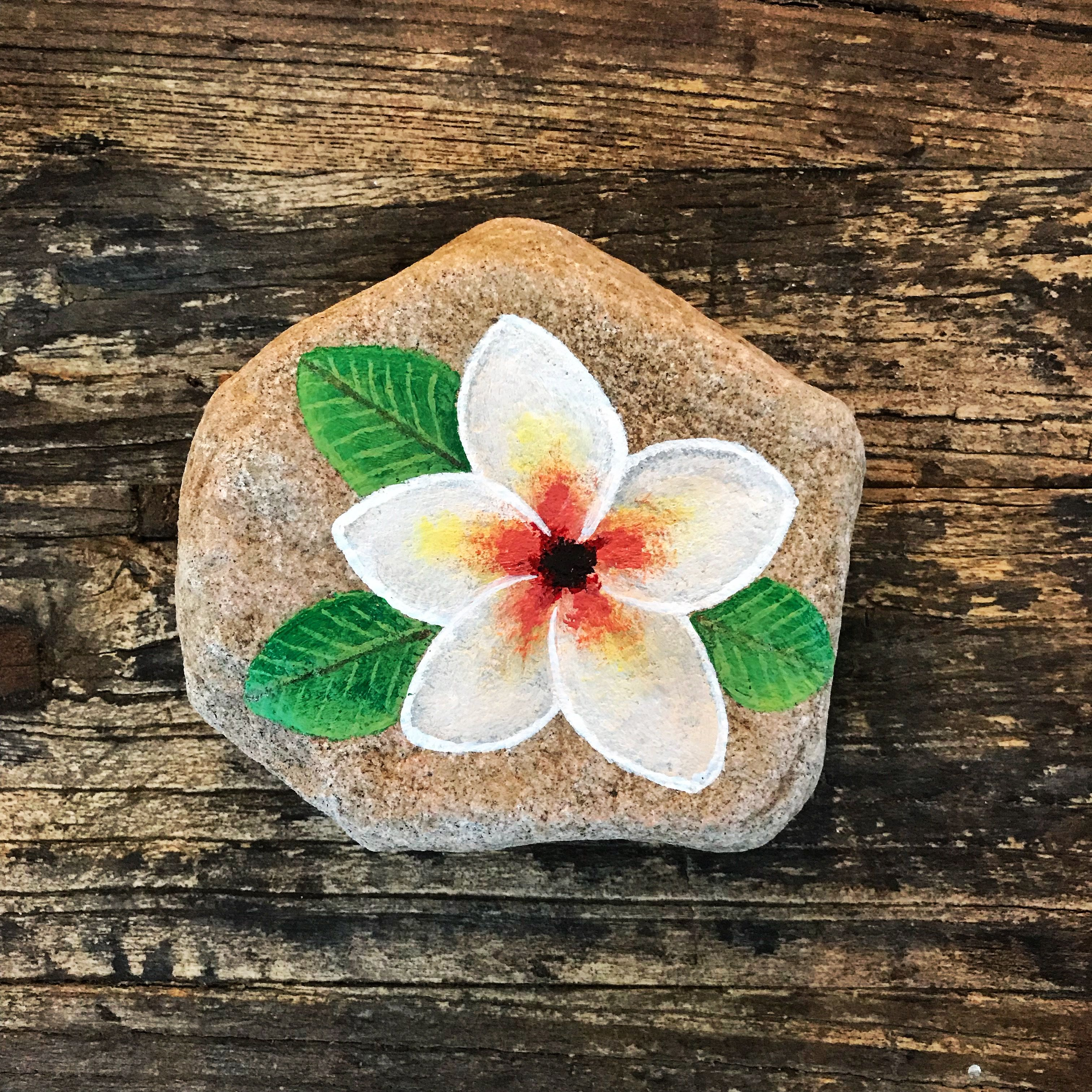 Flower Painted Rock Kindness Rocks Project Hand Painted Flower