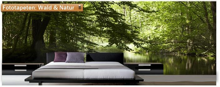 fototapete wald 001428 header daniela pinterest. Black Bedroom Furniture Sets. Home Design Ideas