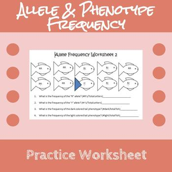 Allele Phenotype Frequency Practice Worksheet Practices