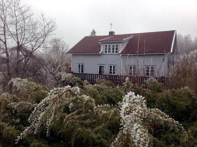 Rimfrost och Villa Solberg