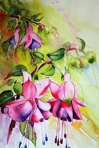 Http Solveig Rimstad Com Bilder Akvareller Bimg 501 Jpg