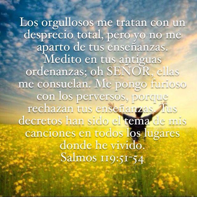 Salmos 119:51-54