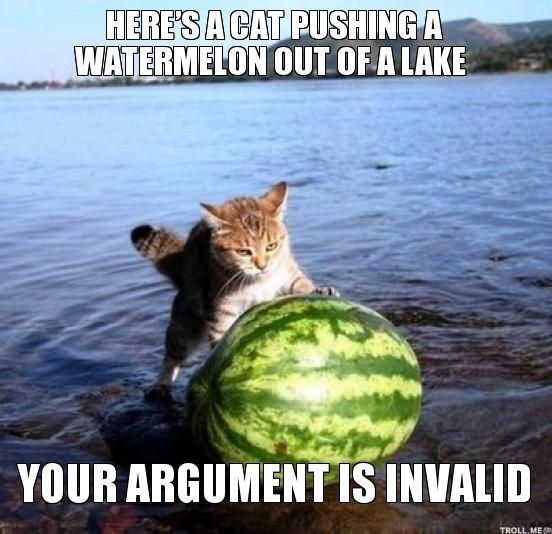 watermelon lake cat argument meme