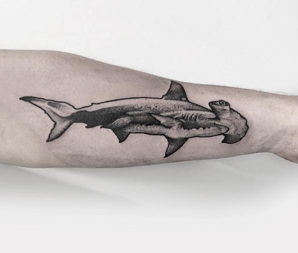 Pin De Sophia Errico En Tattoos For Men Tatuajes De Tiburones Tatuajes Tribales De Tiburon Arte De Tiburon