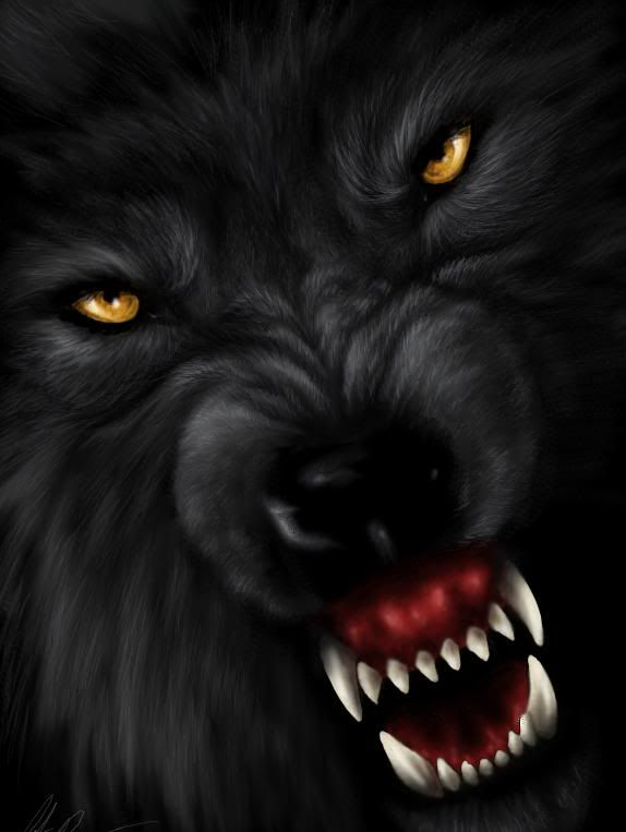 halloween wolves pics evil wolf man graphics and comments - Wolf Halloween