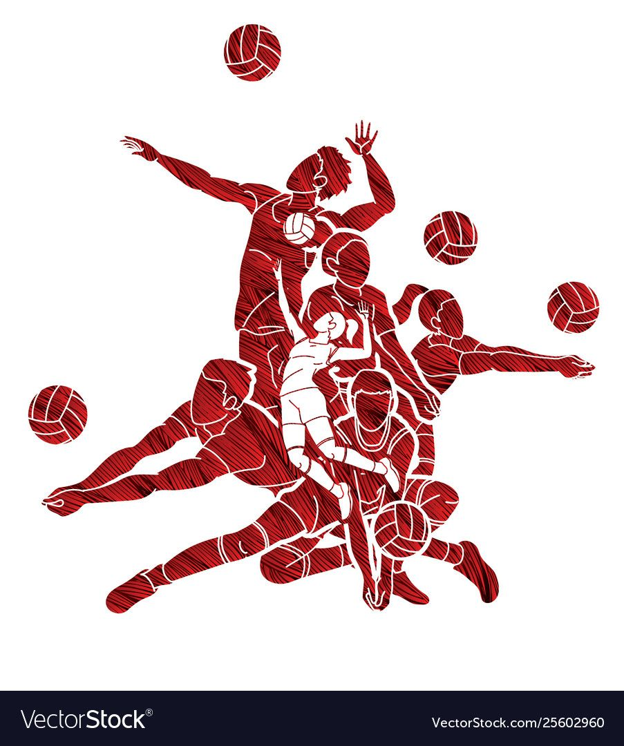 Group Volleyball Players Action Cartoon Graphic Vector Image Spon Players Action Group Volleyball Ad Vector Images Running Cartoon Horse Cartoon