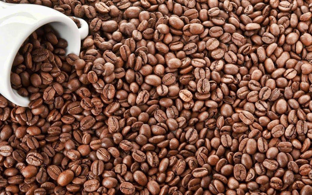 Coffee Seeds Wallpaper Ponsel