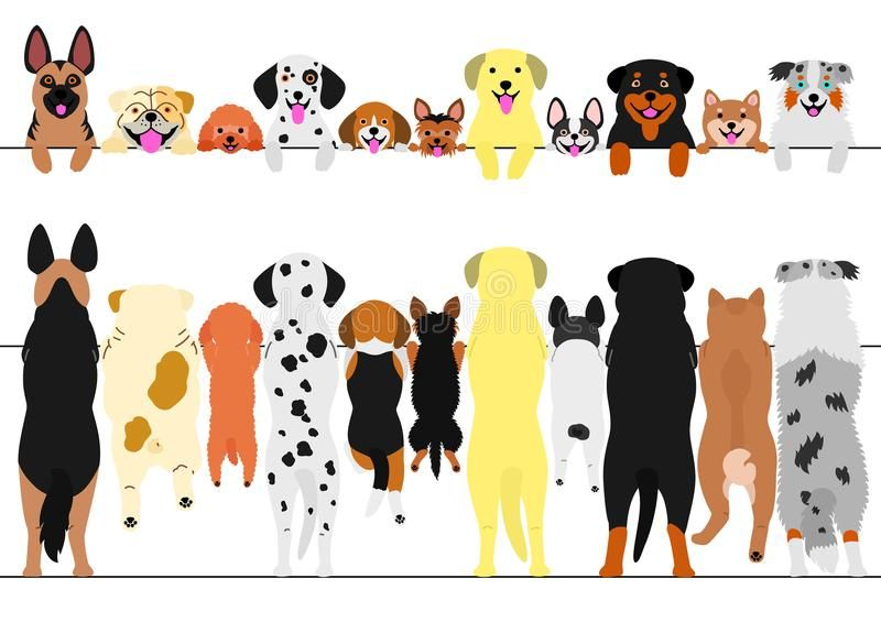 Baby Clothes Banner Pastel Website Banner For Baby Clothing Products Ad Pastel Website Banner B In 2020 Cute Animal Illustration Dog Illustration Cute Dogs