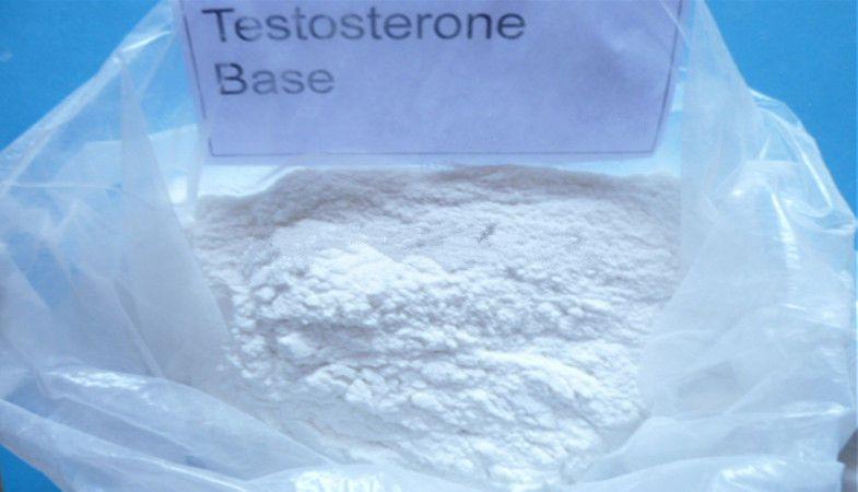 Testosterone Series high purity powder : Testosterone