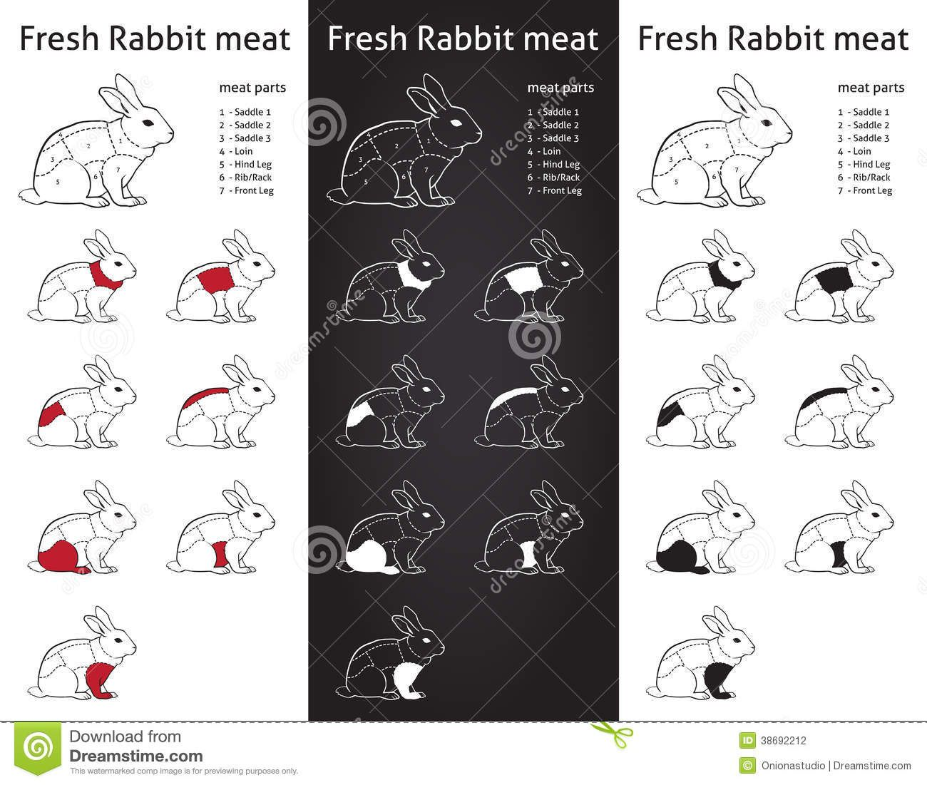 fresh rabbit cuts parts diagram info grapic stock photography  [ 1300 x 1101 Pixel ]
