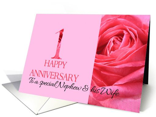 St anniversary to nephew wife pink rose close up card my