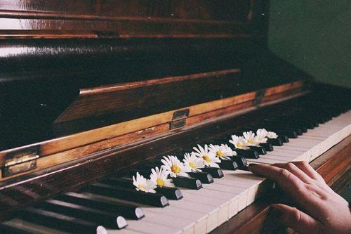 The Piano Is A Stringed Instrument Its Many Parts Are Organized Into Five General Structural And Mechanical Areas Of Either Gra The Piano Piyano Fotografcilik