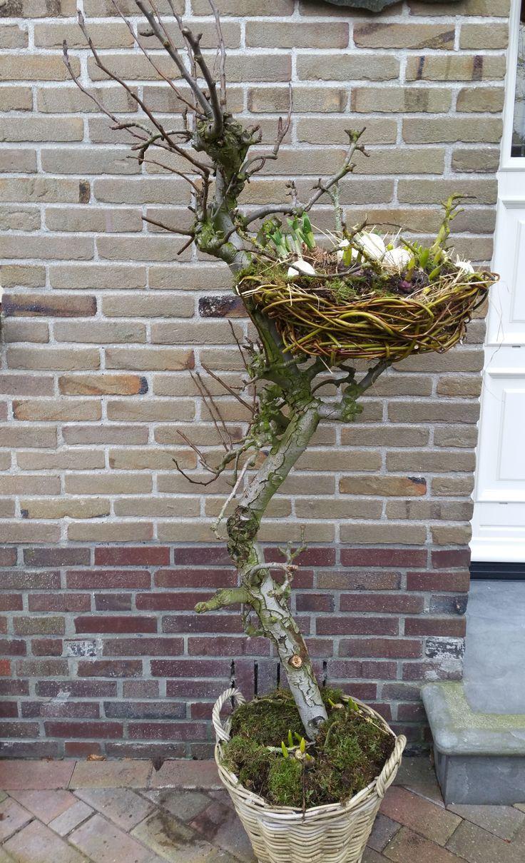 Photo of Vinterhage dekorasjon – dekorasjon på dørstokken ideer